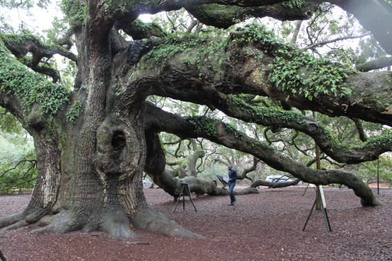 angel-oak-1-22-17-024
